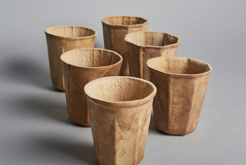 natural grown biodegradable coffee cup